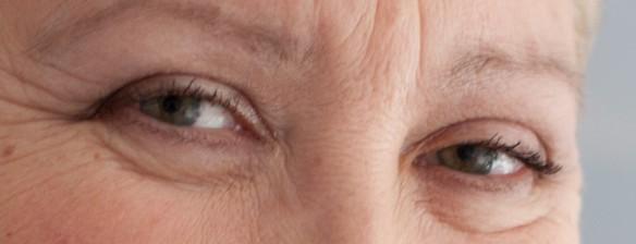 Faces of evil Corrie van Brenk