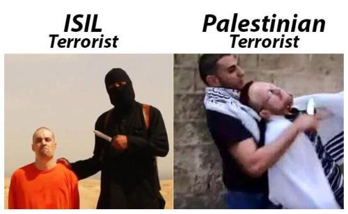 Er valt niet samen te leven met de Islam